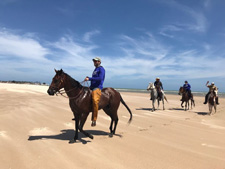 Brazil-Alagoas-The Coconut Trail Ride